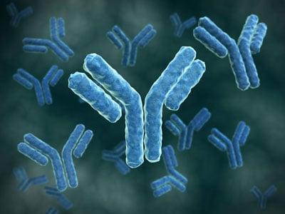 Antibodies cover