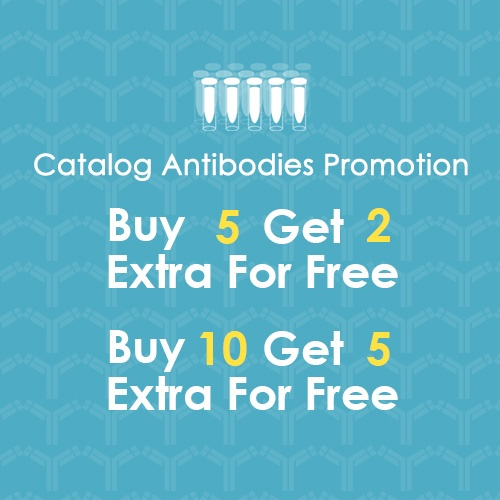 Buy 5 Antibodies Get Extra 2 for Free Promotion.jpg