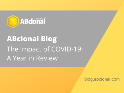 COVID-19 Year in Review Cover