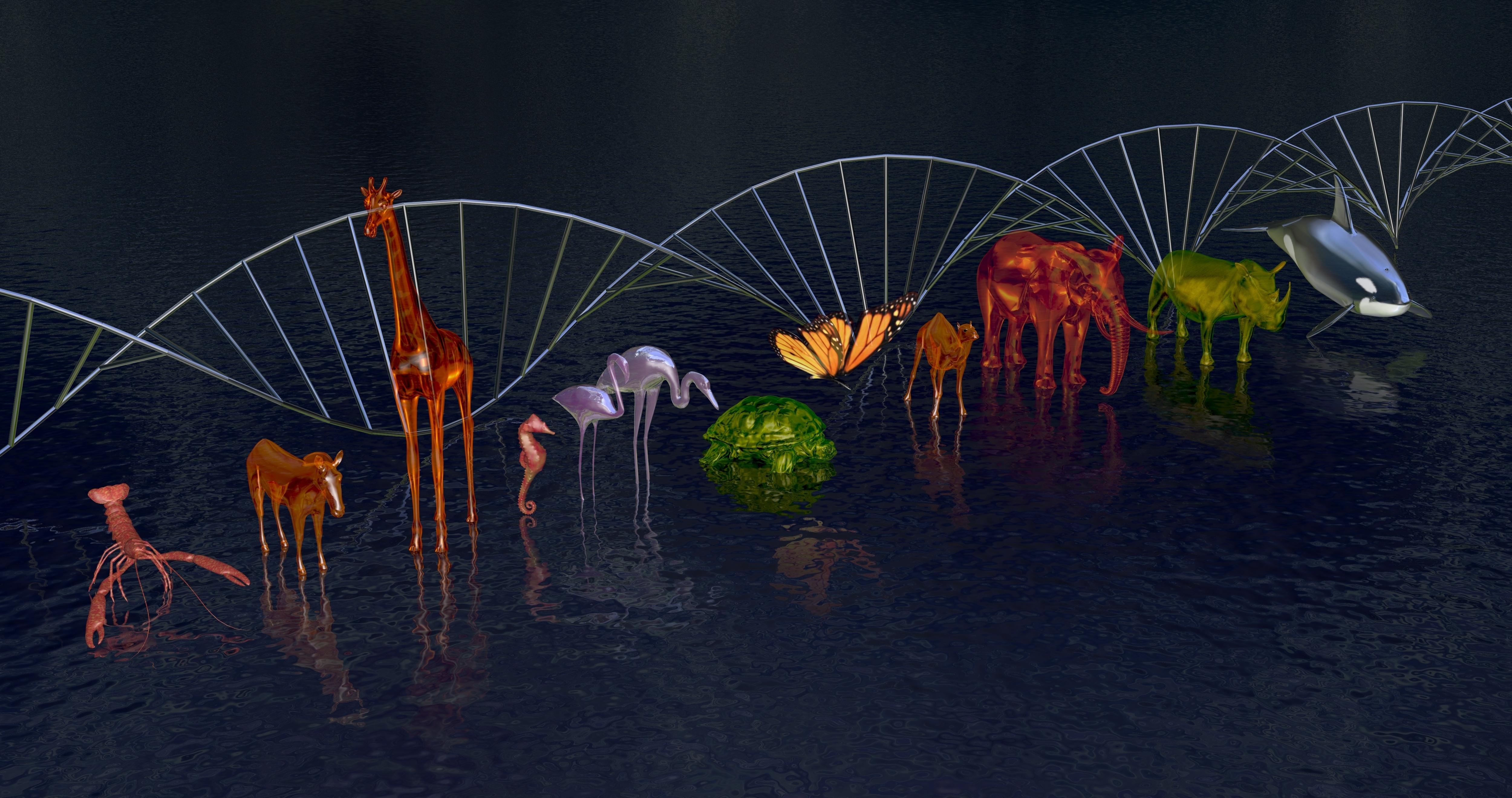 Sequencing biodiversity