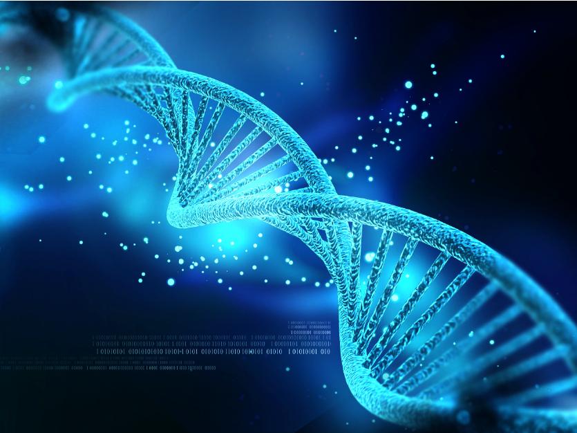 DNA Methyltransferase-01