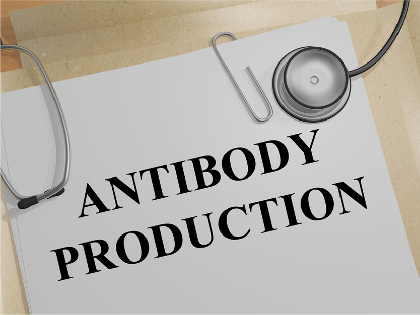 Monoclonal Antibody Production Methods