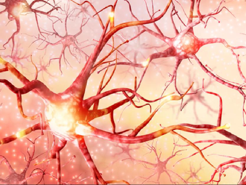 Neural Network-01
