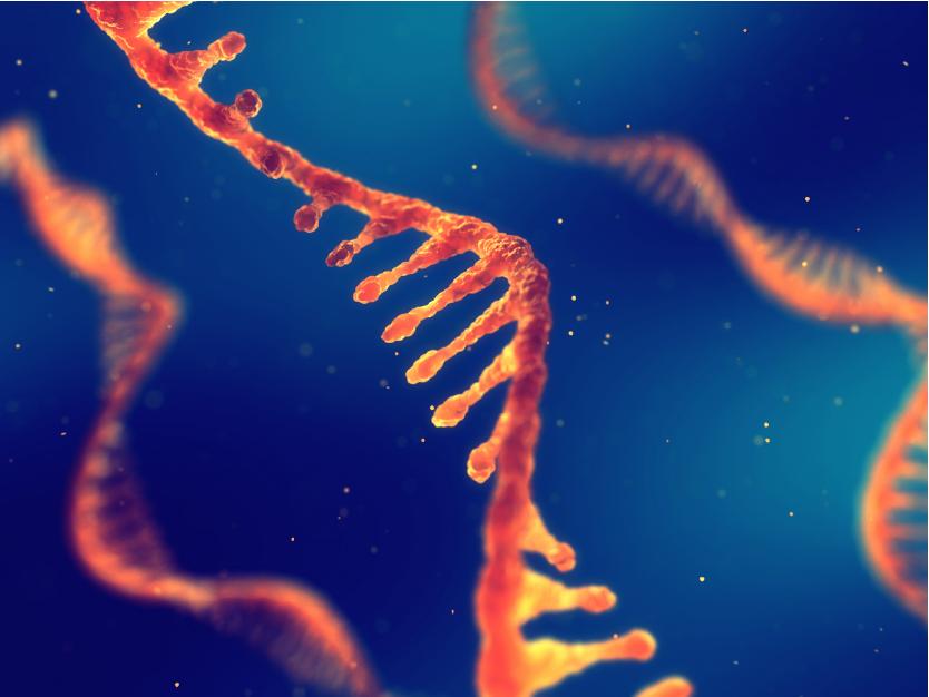 RNA-01